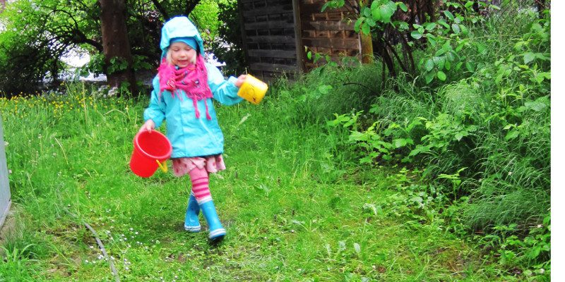 Schnecken im Garten